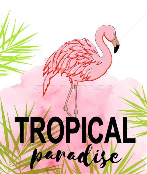 Tropikal flamingo yaz yeşil palmiye yaprağı pembe Stok fotoğraf © Artspace