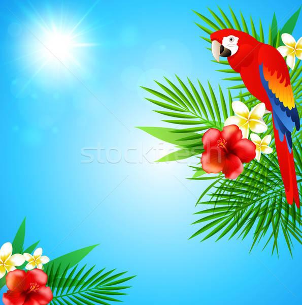 Blu estate tropicali fiori foglie verdi rosso Foto d'archivio © Artspace