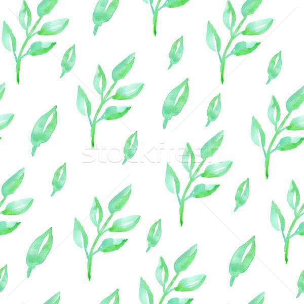 Modèle feuilles vertes couleur pour aquarelle floral blanche Photo stock © Artspace