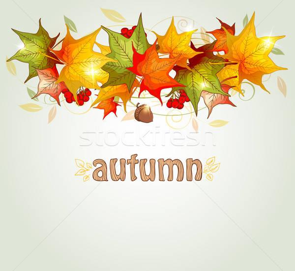 érable laisse gland résumé automne design Photo stock © Artspace