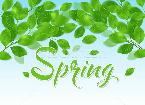Spring background with green leaves Stock photo © Artspace