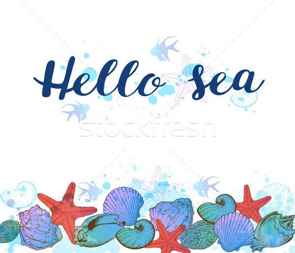 Meer Muscheln Hand gezeichnet weiß Hallo Ozean Stock foto © Artspace