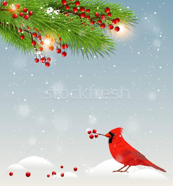 Zielone jodła ptaków zimą krajobraz Zdjęcia stock © Artspace