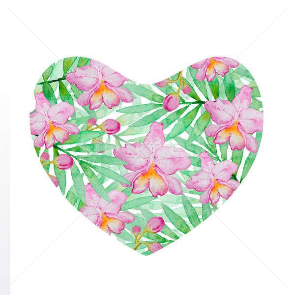 Foto stock: Floral · coração · rosa · aquarela · orquídeas · verde