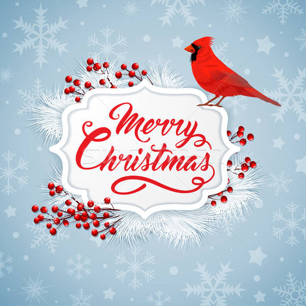 Christmas background with bird Stock photo © Artspace