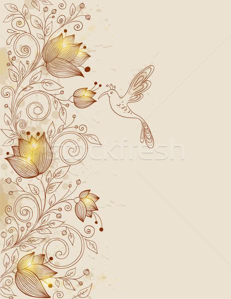 Dessinés à la main floral vecteur rétro oiseau fleur Photo stock © Artspace