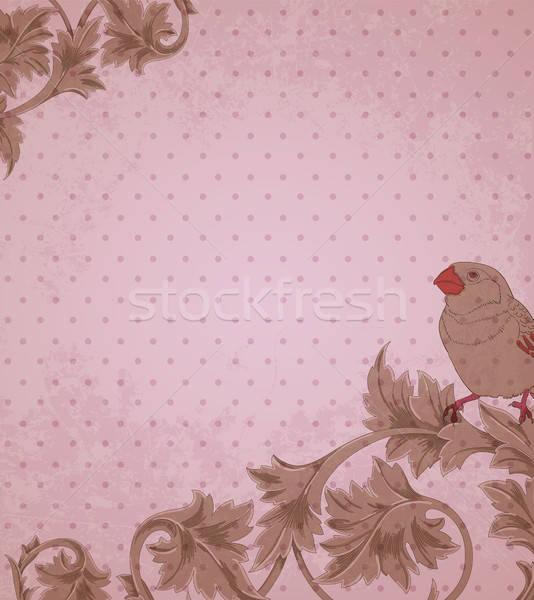 Vintage różowy kwiatowy dekoracyjny elementy ptaków Zdjęcia stock © Artspace