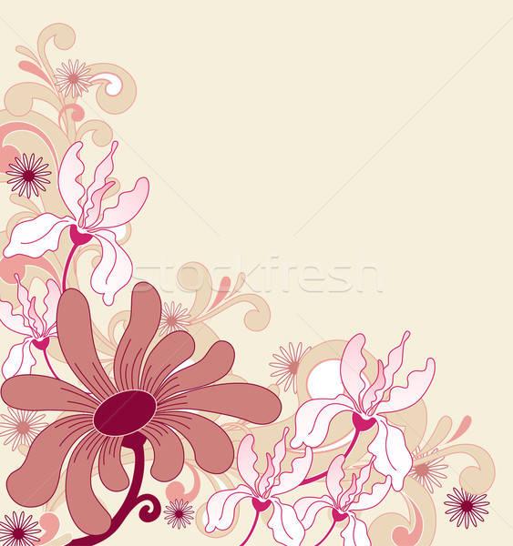 Foto stock: Ornamento · flores · rosa · flores · rojas · primavera · naturaleza