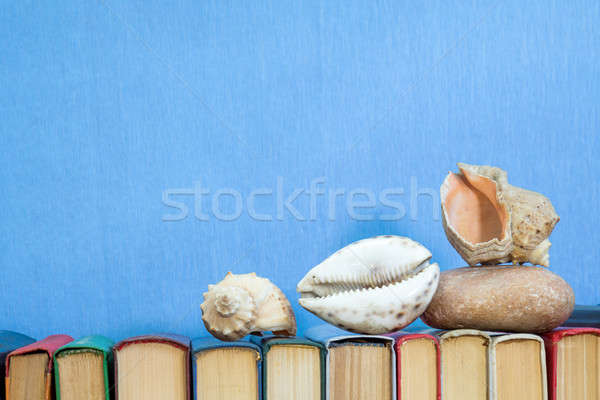 Stock photo: Sea shells and stones on multicolored books at light blue backgr