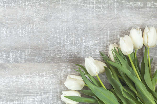 Stock photo: Many white tulips on light wooden surface