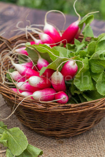 Bunch of radishes in a wicker basket Stock photo © artsvitlyna