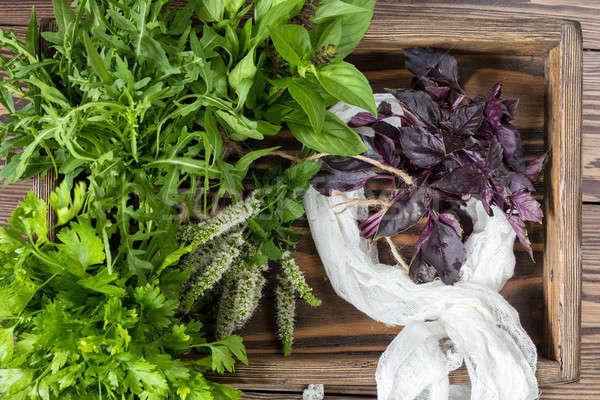 Fresh organic green herbs wooden floor Stock photo © artsvitlyna