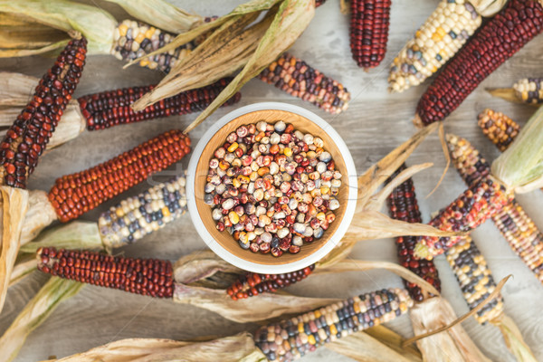 Cheerful and Colorful dried Indian Corn on light wooden surface  Stock photo © artsvitlyna