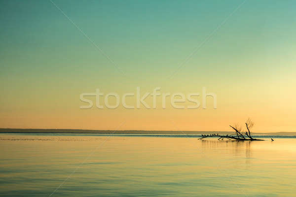 Stock photo: Beautiful sunrise sky over calm river surface