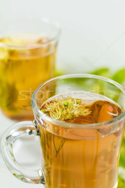 Linden flower tea in a transparent grog glass with a linden blos Stock photo © artsvitlyna
