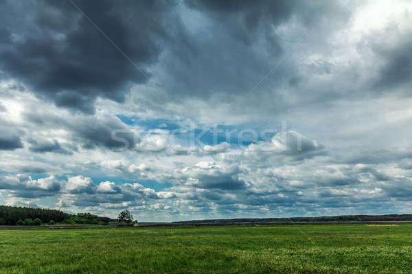 Fluffy rainy clouds over a green field in May Stock photo © artsvitlyna