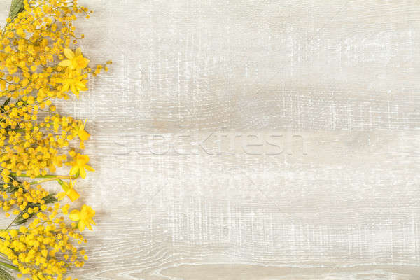 Spring holiday composition in yellow colors Stock photo © artsvitlyna