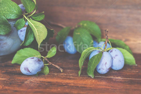 Fresh plums with green leaves on the dark wooden table. Shallow  Stock photo © artsvitlyna