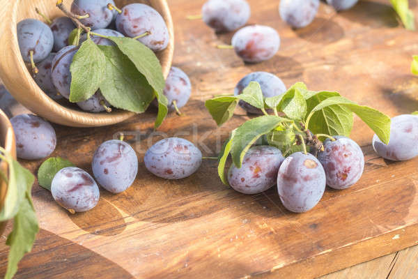 Fresh plums on wooden table in sunny day in garden Stock photo © artsvitlyna