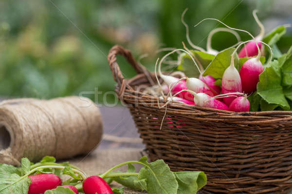 Stock photo: Bunch of radishes in a wicker basket on the table