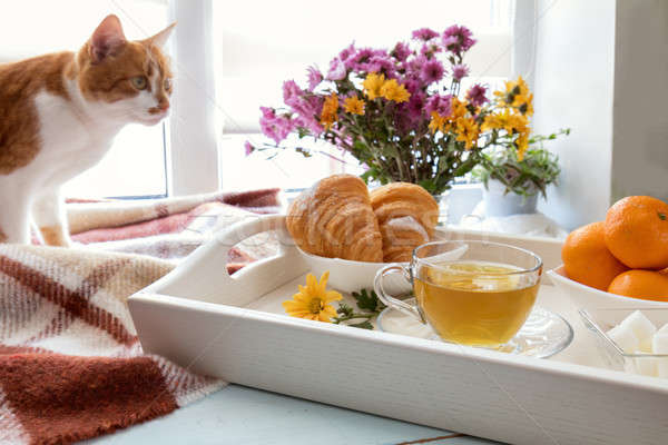 Stock photo: Delicious breakfast in tray
