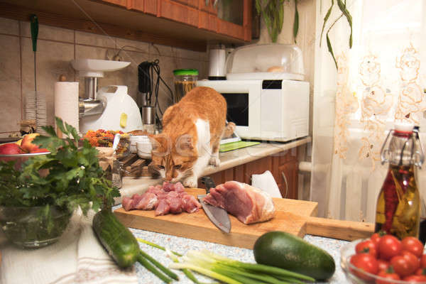 Cute red cat stealing meat from the kitchen table. Small cozy ki Stock photo © artsvitlyna