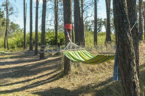 Relaxing lazy time with color hammock in the green forest. Stock photo © artsvitlyna