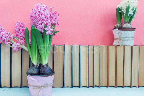 Pink hyacinths and whit hyacinths   in pot infront of pile of bo Stock photo © artsvitlyna