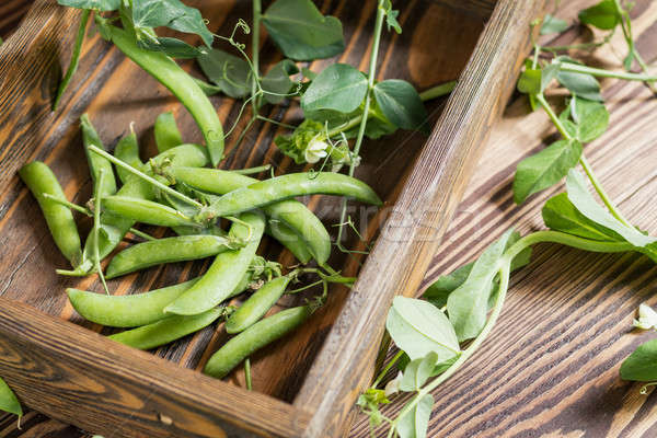 Pods of green peas and pea on a dark wooden surface. Vintage woo Stock photo © artsvitlyna