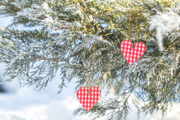 Beautiful valentine holiday background with two checkered hearts Stock photo © artsvitlyna