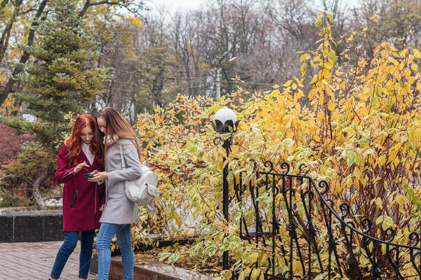 Stock photo: Two female teenagers looking for the news in the smartphone in t