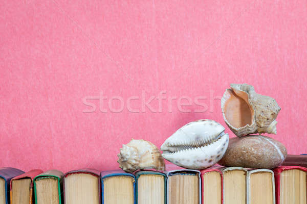 Sea shells on multicolored books at pink background. Education c Stock photo © artsvitlyna