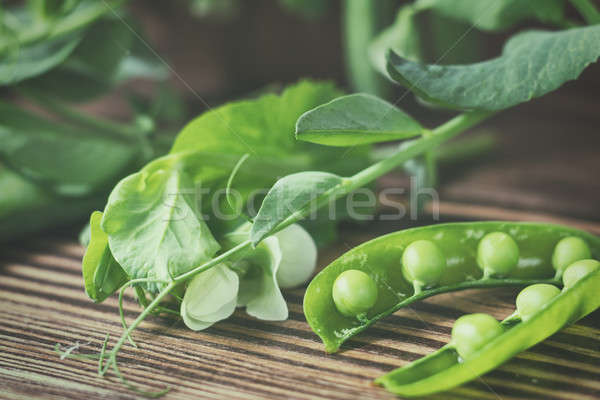 Pods of green peas and pea on dark wooden surface Stock photo © artsvitlyna