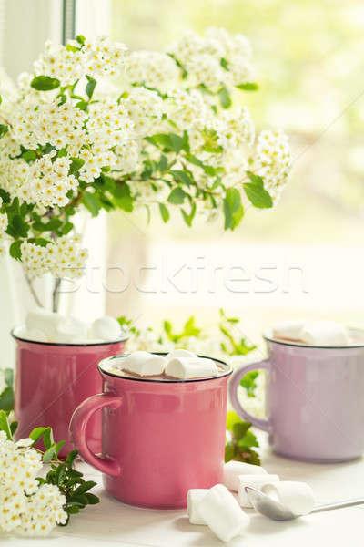Quente rosa fresco primavera flores brancas Foto stock © artsvitlyna