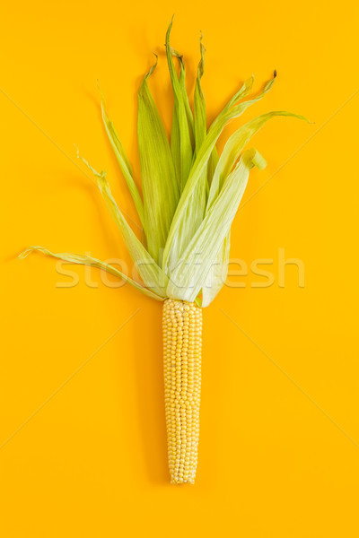 Stock photo: Corn on yellow surface as decoration for Thanksgiving Table, Hal