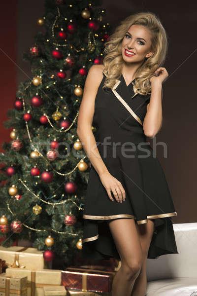 美 エレガントな 女性 クリスマス 現在 ボックス ストックフォト © arturkurjan