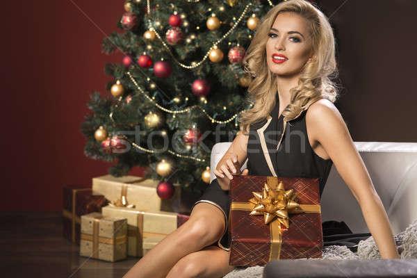 Stok fotoğraf: Güzellik · zarif · kadın · Noel · sunmak · kutu