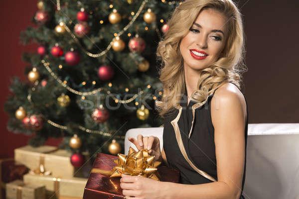 Beauté élégante femme Noël présents boîte Photo stock © arturkurjan