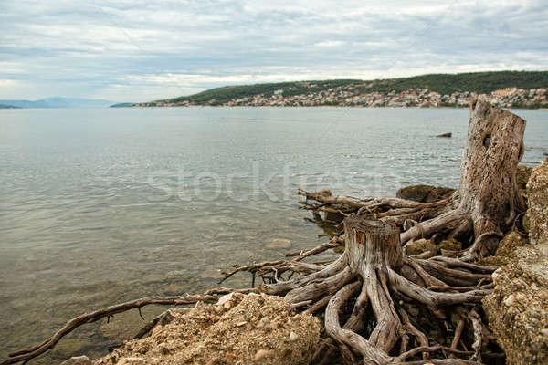 海 ビーチ 雲 建物 風景 海 ストックフォト © arturkurjan