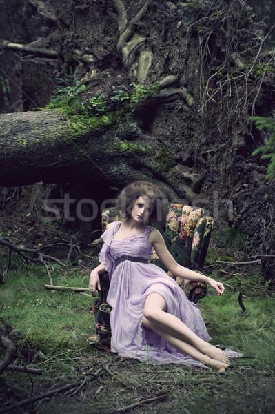 グラマラス 女性 着用 美しい ドレス かわいい ストックフォト © arturkurjan