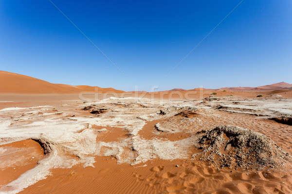 Piękna krajobraz śmierci dolinie Świt ukryty Zdjęcia stock © artush