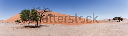 wide panorama Dune 45 in sossusvlei Namibia Stock photo © artush