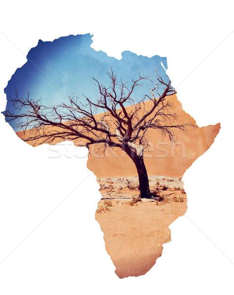Düne Namibia toter Baum besten Landschaft Weltkarte Stock foto © artush