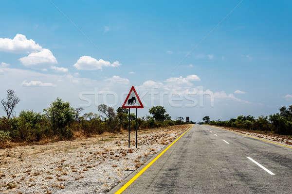 бесконечный дороги Blue Sky знак Слоны Намибия Сток-фото © artush