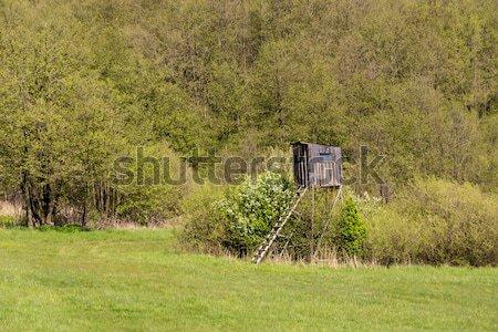 Wooden Hunters High Seat, hunting tower Stock photo © artush