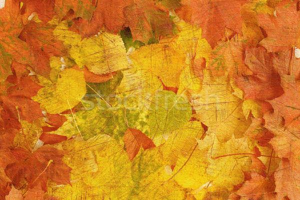 Retro sonbahar yaprakları arka plan soyut yeşil bitki Stok fotoğraf © artush