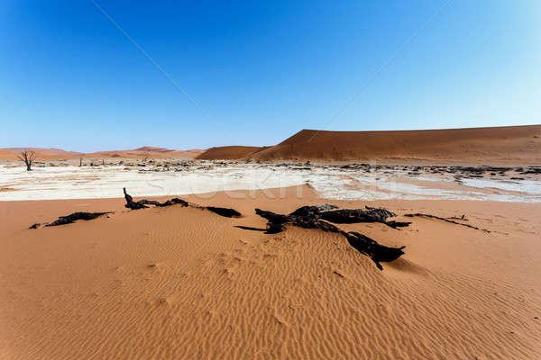 Güzel manzara ölüm vadi Namibya gündoğumu Stok fotoğraf © artush
