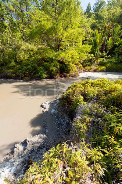 sulphurous lakes near Manado, Indonesia  Stock photo © artush
