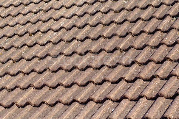 texture of roof Stock photo © artush