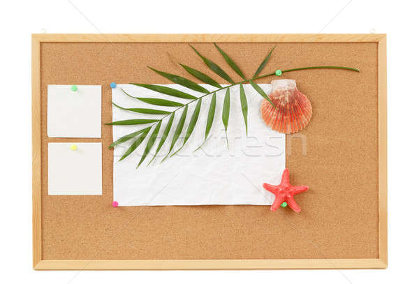 Background with blank crumpled paper, seashells, palm leave and seashell Stock photo © artush